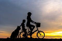 现出轮廓骑自行车的人可爱的家庭在海洋的日落 妈妈和女儿有骑自行车在海滩的狗的 库存照片