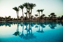 现出轮廓与伞椅子水池的棕榈树在豪华旅馆手段在日出时间 夏天职业 免版税库存照片