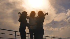 现出轮廓握手,跳,高兴并且拥抱的女孩 商人在站立的成功高兴在屋顶 影视素材