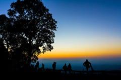 现出轮廓的旅游和大树 图库摄影