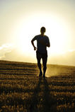 现出轮廓逃跑在乡下秸杆领域背后照明的年轻体育人路在夏天日落 免版税库存照片