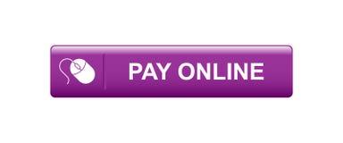 现在网上薪水 向量例证