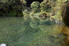 现在这条河快速地移动! 免版税图库摄影