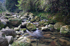 现在这条河快速地移动! 免版税库存照片