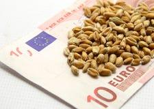 现在麦子的更多货币 库存照片