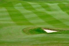 现场精心制作的高尔夫球草坪 免版税图库摄影