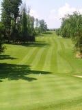 现场高尔夫球 免版税库存照片