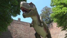 现实暴龙rex恐龙在他下的迪诺公园 股票视频
