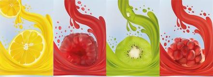 现实果汁,猕猴桃,莓,石榴,柠檬 E r 3d?? 库存例证