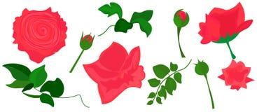 ? 现实玫瑰导航剪贴美术桃红色花图象 向量例证