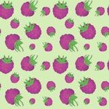 现实莓图象的无缝的样式 免版税库存照片
