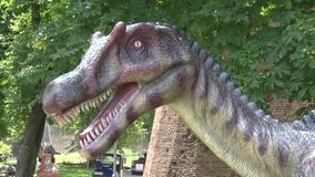 现实spinosaurus恐龙在迪诺公园头和脖子 股票录像