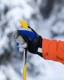现有量和滑雪杆 免版税库存照片