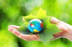 现有量藏品地球 免版税库存图片