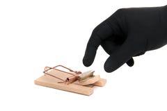 现金疏松捕鼠器 免版税库存照片