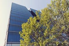 现代办公楼在城市 免版税库存图片