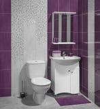 现代卫生间豪华内部有洗手间的 库存图片