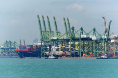 现代和繁忙的新加坡Tanjong Pagar PSA看法端起服务货船 免版税库存照片