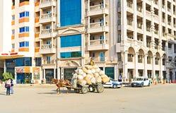 现代埃及 库存照片