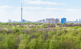 现代城市和绿色森林在春天 免版税库存照片