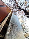 现代大厦大块玻璃墙壁 免版税库存图片