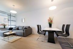 现代室内设计:客厅 免版税库存图片