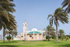 现代清真寺和棕榈在沙特阿拉伯 库存照片