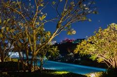现代游泳池照亮与在旅馆或房子屋顶的光在晚上 免版税库存图片