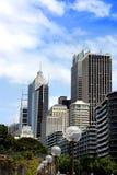 现代玻璃大厦和树 库存图片