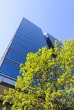 现代玻璃大厦在城市 免版税库存图片