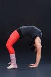 现代的跳芭蕾舞者 库存图片