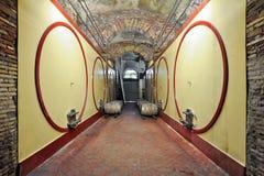 现代葡萄酒库的内部 库存图片