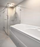 现代阵雨和浴缸。 免版税库存照片