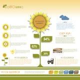 现代infographic绿色模板设计。 免版税库存照片