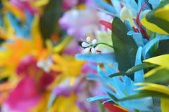 玻利尼西亚头状花序花圈背景 图库摄影