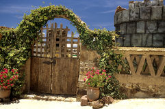 玻利维亚大厦湖titicaca 免版税库存图片