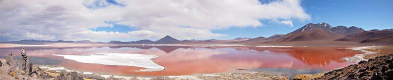 玻利维亚盐水湖全景红色 库存图片