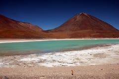 玻利维亚绿色盐水湖 免版税库存照片