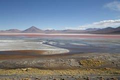 玻利维亚colorada拉古纳 库存照片