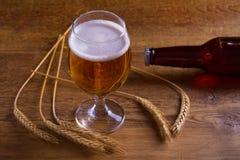 玻璃和瓶啤酒,大麦的耳朵在木桌上的 侥幸 免版税库存图片