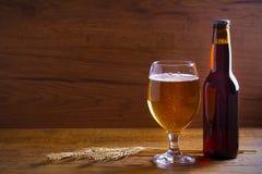 玻璃和瓶啤酒,大麦的耳朵在木背景的 侥幸 免版税库存图片