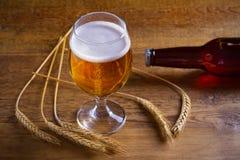 玻璃和瓶啤酒,大麦的耳朵在木背景的 侥幸 免版税图库摄影