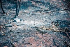 玻璃啤酒瓶在被烧焦的地面上说谎 免版税库存图片