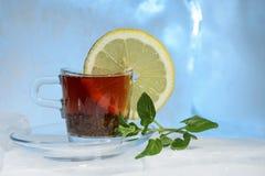 玻璃杯子在美丽的蓝色冰的强的红茶用黄色柠檬和绿色薄菏 图库摄影