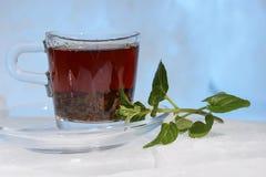玻璃杯子在美好的蓝色背景的强的红茶用绿色薄菏 库存照片