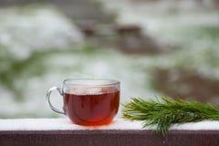 玻璃杯子热的茶在一张木桌上的冬天公园 图库摄影