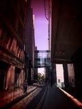 玻璃桥梁4 库存照片