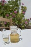 玻璃水瓶酒家酒 免版税库存图片