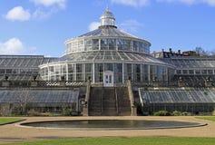 玻璃温室在哥本哈根植物园里  库存照片