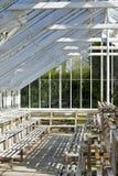 玻璃温室 免版税库存图片